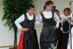 2009 Falunap