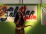 2011 Falunap