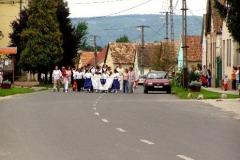 Falunap - 2005.08.27. Ujpetrei falunap